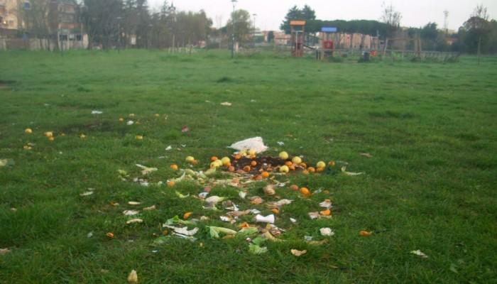 Pineto parco degrado