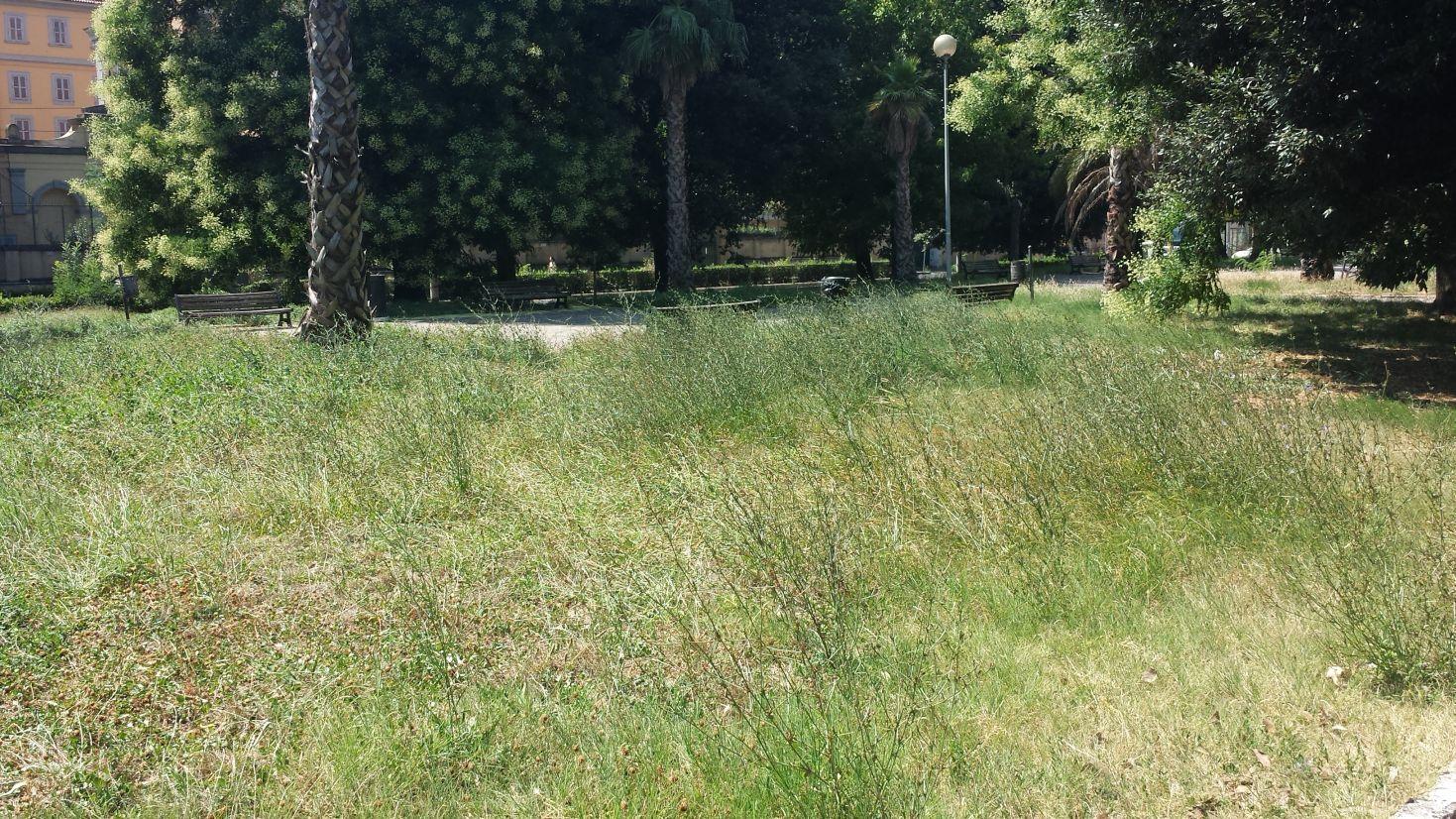 Giardini viale Tiziano degrado 7