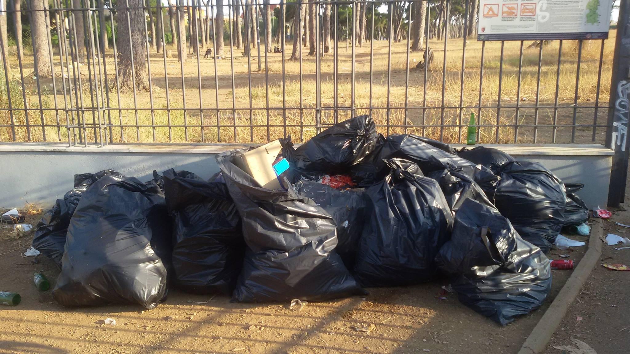 Pineto rifiuti