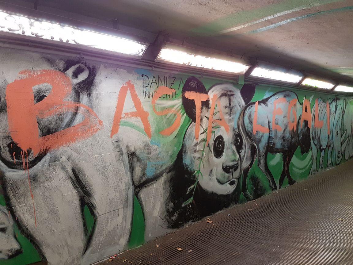 Graffiti staz nomentana5