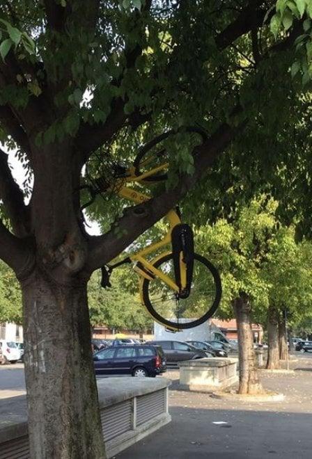 bici a flusso libero2