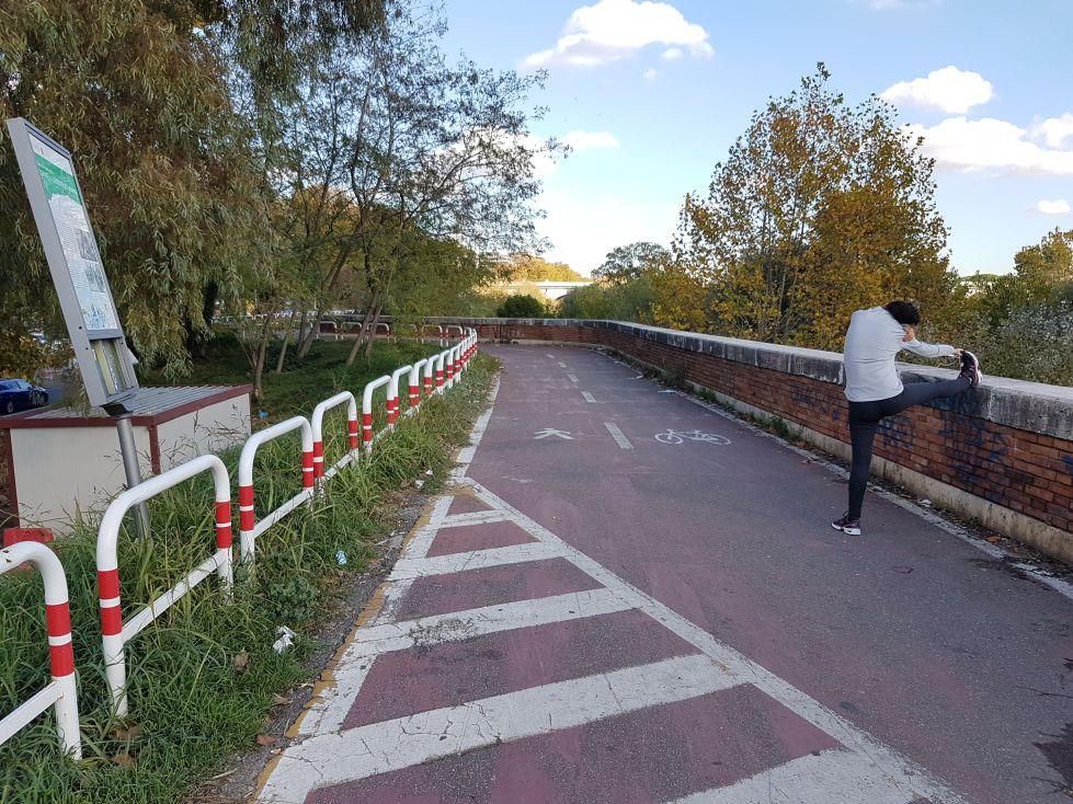 Ciclabile ponte milvio6